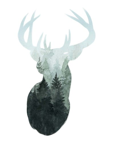 Forest Majesty I art print by Grace Popp for $53.75 CAD