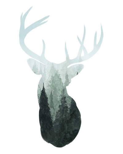 Forest Majesty II art print by Grace Popp for $53.75 CAD