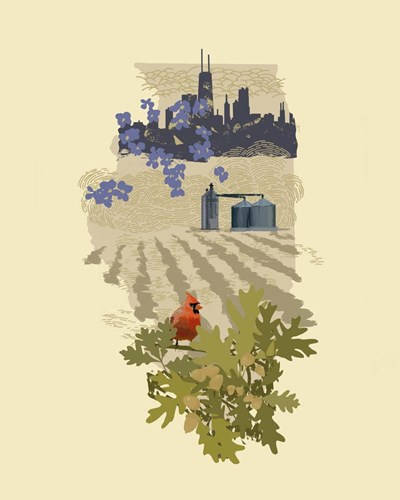 Illustrated State-Illinois art print by Jacob Green for $53.75 CAD