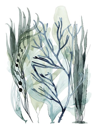 Sea Leaves III art print by Grace Popp for $63.75 CAD