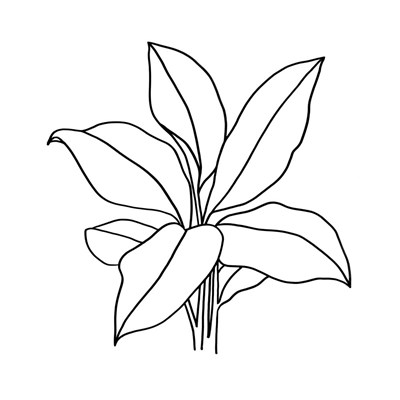 Foliage Contour II art print by Annie Warren for $32.50 CAD