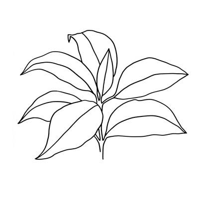 Foliage Contour III art print by Annie Warren for $32.50 CAD