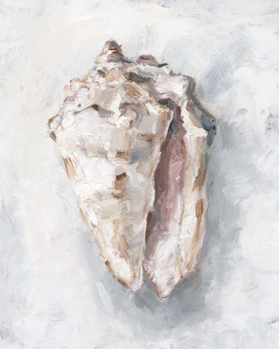 White Shell Study II art print by Ethan Harper for $53.75 CAD