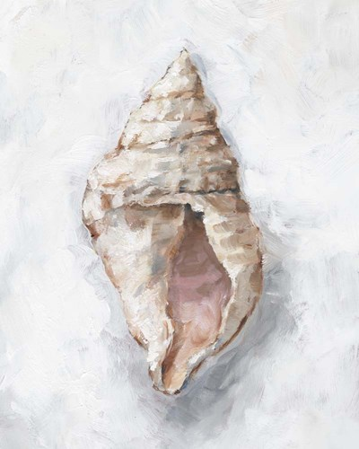 White Shell Study III art print by Ethan Harper for $53.75 CAD