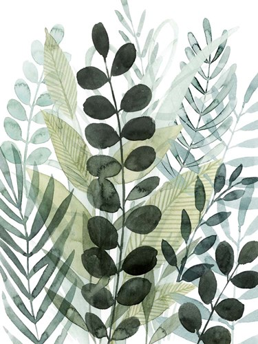 Forest Forage I art print by Grace Popp for $63.75 CAD