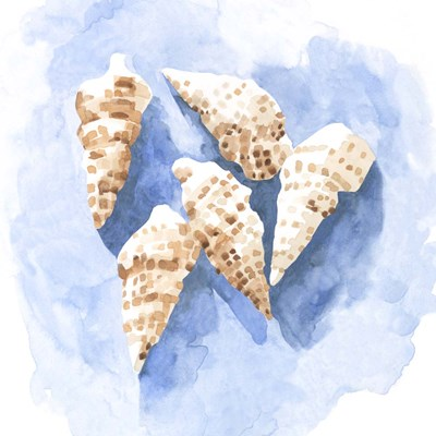 Shell Impressions II art print by Emma Caroline for $53.75 CAD