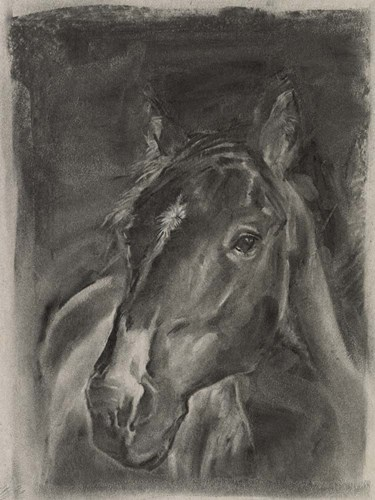 Charcoal Horse Study on Grey II art print by Jennifer Parker for $63.75 CAD