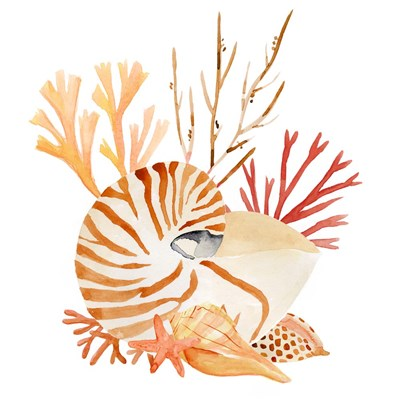 Nautilus Grouping II art print by Annie Warren for $53.75 CAD
