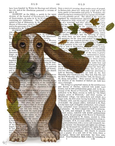Basset Hound Windswept and Interesting art print by Fab Funky for $33.75 CAD