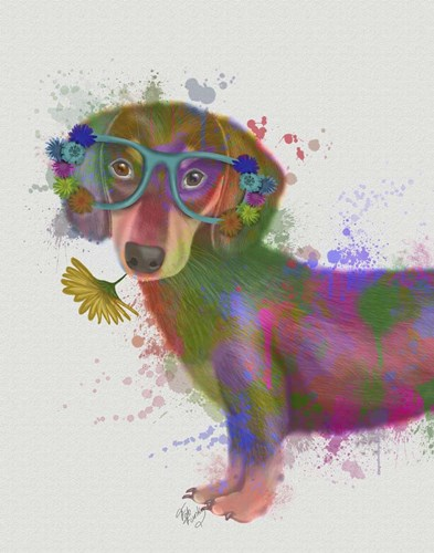 Dachshund And Glasses Rainbow Splash art print by Fab Funky for $33.75 CAD