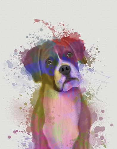 Boxer 1 Portrait Rainbow Splash art print by Fab Funky for $33.75 CAD