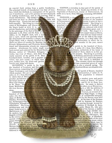 Rabbit and Pearls, Full art print by Fab Funky for $33.75 CAD