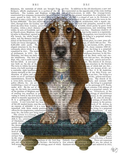Basset Hound and Tiara art print by Fab Funky for $33.75 CAD