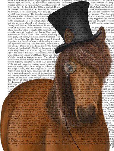 Horse Top Hat and Monocle art print by Fab Funky for $35.00 CAD