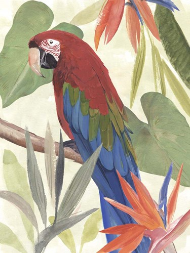 Tropical Parrot Composition III art print by Annie Warren for $38.75 CAD