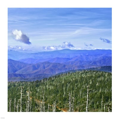 Great Smoky Mountains art print by Unknown for $48.75 CAD