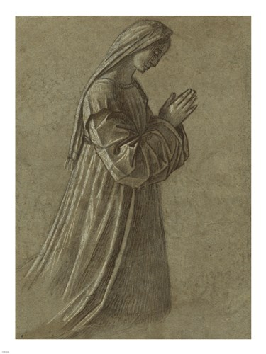 Study of the Virgin art print by Vittore Carpaccio for $67.50 CAD