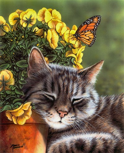 Afternoon Nap art print by Marilyn Barkhouse for $32.50 CAD