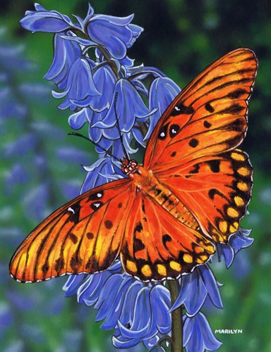 Brilliant Eye Jewel Butterfly art print by Marilyn Barkhouse for $37.50 CAD