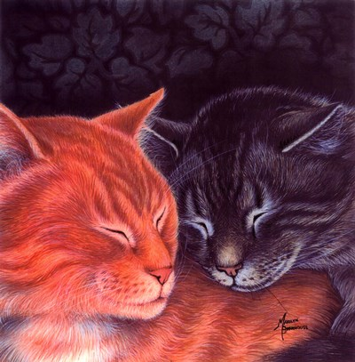 Nap Buddies art print by Marilyn Barkhouse for $26.25 CAD