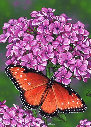 Queen Butterfly art print by Marilyn Barkhouse for $37.50 CAD