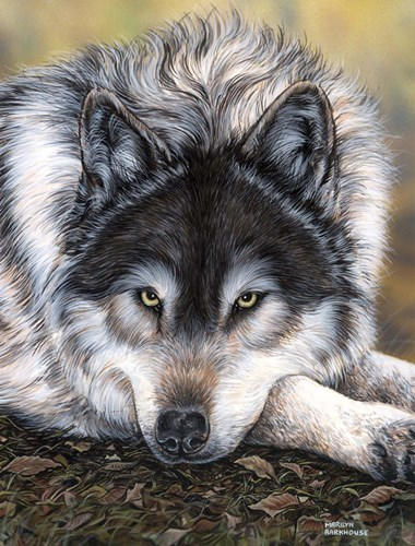 Watchful Waiting art print by Marilyn Barkhouse for $22.50 CAD