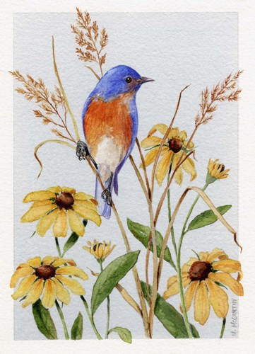 Bluebird And Blackeyed Susans art print by Maureen Mccarthy for $40.00 CAD