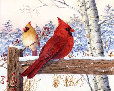 Cardinal Pair with Birch art print by Maureen Mccarthy for $52.50 CAD