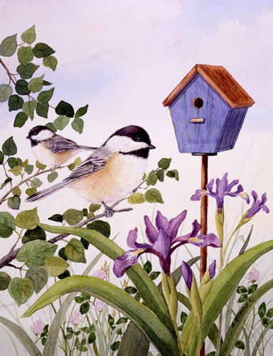 Chickadees And Iris art print by Maureen Mccarthy for $20.00 CAD