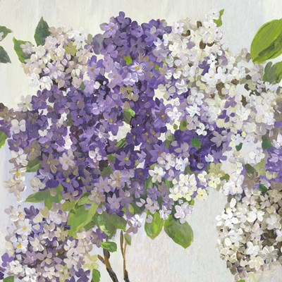 Summer Hydrangea II art print by Asia Jensen for $56.25 CAD