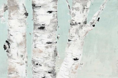 Birch Tree Close Up art print by Marie-Elaine Cusson for $42.50 CAD