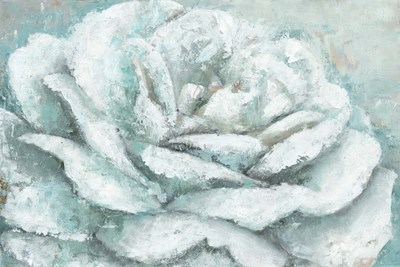 White Rose Splendor art print by Marie-Elaine Cusson for $42.50 CAD