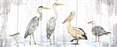Birds of the Coast Rustic Panel art print by Tara Reed for $35.00 CAD