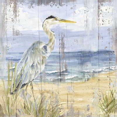 Birds of the Coast Rustic I art print by Tara Reed for $53.75 CAD