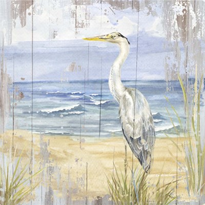 Birds of the Coast Rustic II art print by Tara Reed for $53.75 CAD