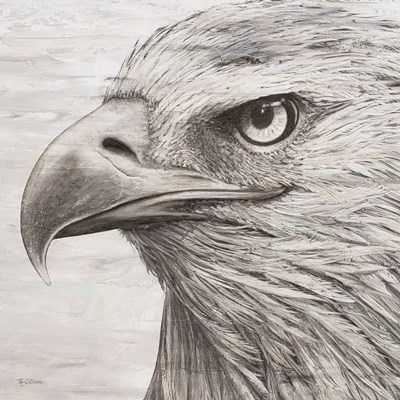 Portrait of an Eagle art print by Marie-Elaine Cusson for $76.25 CAD