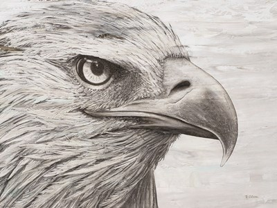Eagle landscape art print by Marie-Elaine Cusson for $63.75 CAD