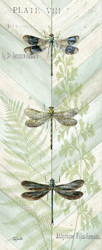 Dragonfly Botanical Panels II art print by Tre Sorelle Studios for $35.00 CAD