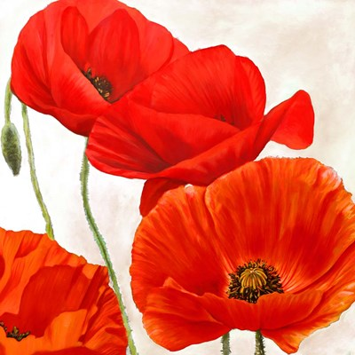 Poppies II art print by Luca Villa for $76.25 CAD