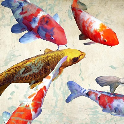 Koi I art print by Teo Rizzardi for $76.25 CAD