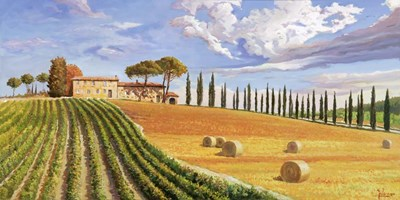 Colline Toscane art print by Adriano Galasso for $50.00 CAD