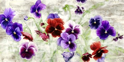 Field of Pansies art print by Jenny Thomlinson for $50.00 CAD