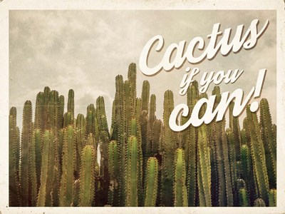 Cactus If You Can art print by Ashley Hutchins for $41.25 CAD