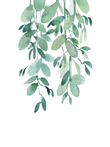 Eucalyptus art print by A.V. Art for $41.25 CAD