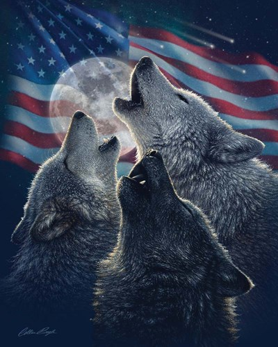 Wolf Trinity Patriotic art print by Collin Bogle for $40.00 CAD