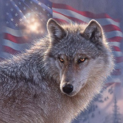 Lone Wolf America art print by Collin Bogle for $48.75 CAD