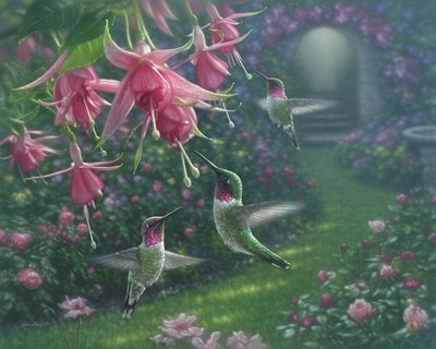 Hummingbird Haven art print by Collin Bogle for $42.50 CAD