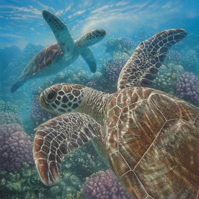 Sea Turtles - Turtle Bay - Square art print by Collin Bogle for $48.75 CAD
