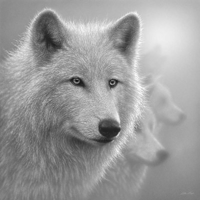 Arctic Wolves - Whiteout - B&W art print by Collin Bogle for $48.75 CAD
