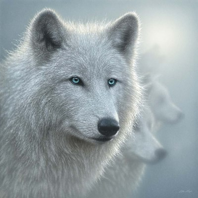 Arctic Wolves - Whiteout art print by Collin Bogle for $48.75 CAD